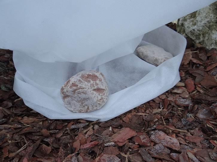 """kolnierzzkamieniami - """"Ubranka"""" - drugi etap zabezpieczania roślin przed zimą"""