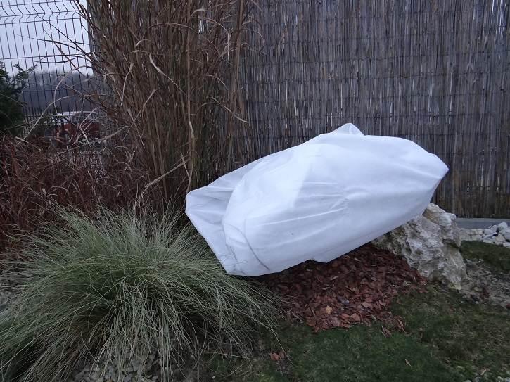 """ubranyklonpalmowy - """"Ubranka"""" - drugi etap zabezpieczania roślin przed zimą"""