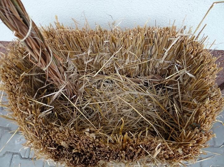 wypelnienie - Domowy recykling - zabezpieczajcie rośliny przed mrozem materiałami ponownego wykorzystania