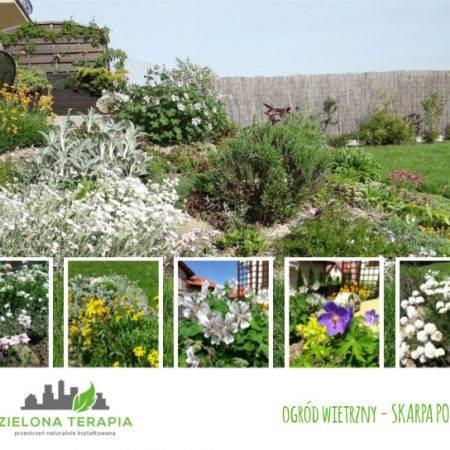 ogród wietrzny skarpa po 450x450 - Mały ogród przydomowy w Krakowie