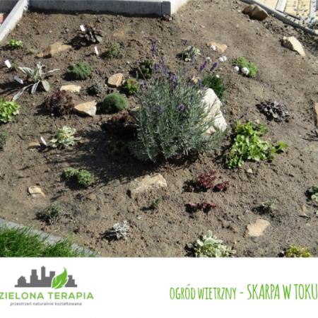 ogród wietrzny skarpa w toku 450x450 - Mały ogród przydomowy w Krakowie
