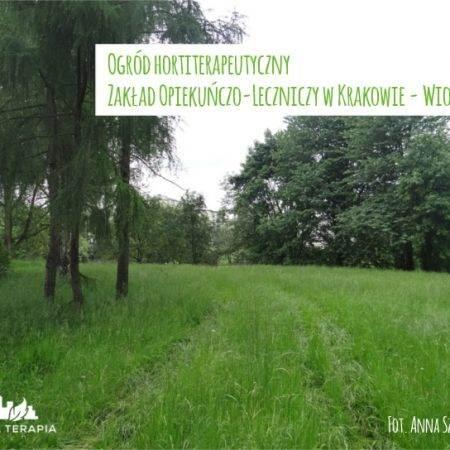 wiosna2015 ogrod ZOL a 450x450 - Nadzór nad realizacją ogrodu hortiterapeutycznego