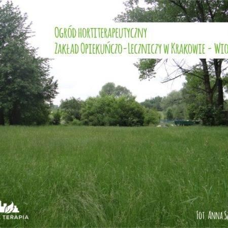 wiosna2015 ogrod ZOL b 450x450 - Nadzór nad realizacją ogrodu hortiterapeutycznego