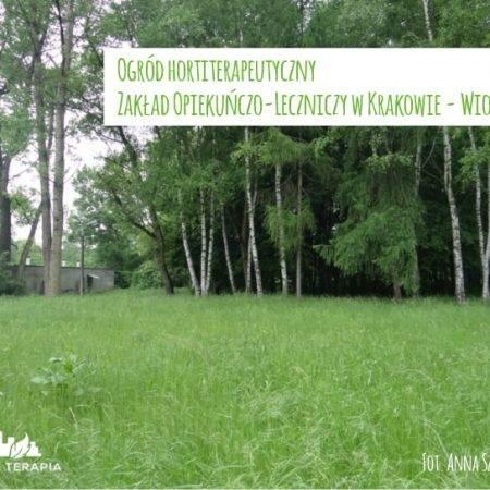 wiosna2015 ogrod ZOL c 450x450 - Nadzór nad realizacją ogrodu hortiterapeutycznego