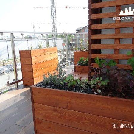 balkoprojekt balkonu Krakówn2016_Zielona Terapia