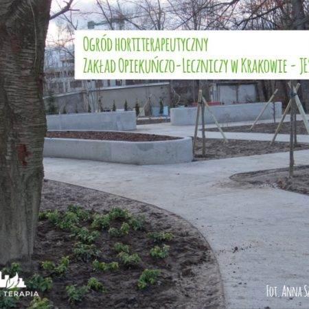 jesien2015 ogrod ZOL 8 450x450 - Nadzór nad realizacją ogrodu hortiterapeutycznego
