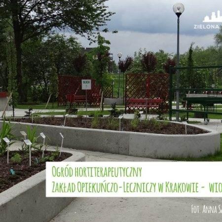 ogród ZOL otwarcie wiosna 2016 2 450x450 - Nadzór nad realizacją ogrodu hortiterapeutycznego