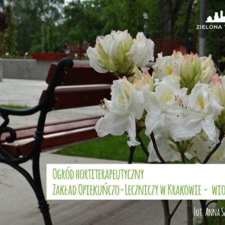 ogród ZOL otwarcie wiosna 2016 3 450x450 - Nadzór nad realizacją ogrodu hortiterapeutycznego