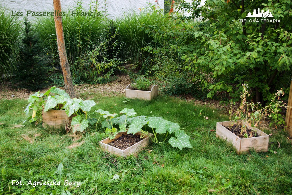 Zielona Terapia eko osiedle 12 - Eko-osiedle| Les Passerelles, Annecy, Francja
