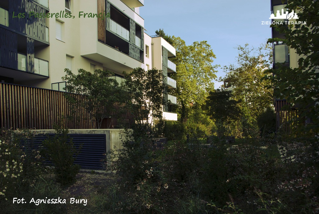 Zielona Terapia eko osiedle 5 - Eko-osiedle| Les Passerelles, Annecy, Francja