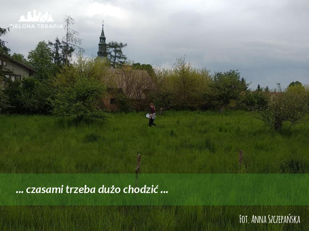 Zielona Terapia med 2 - Bardzo duży ogród przydomowy