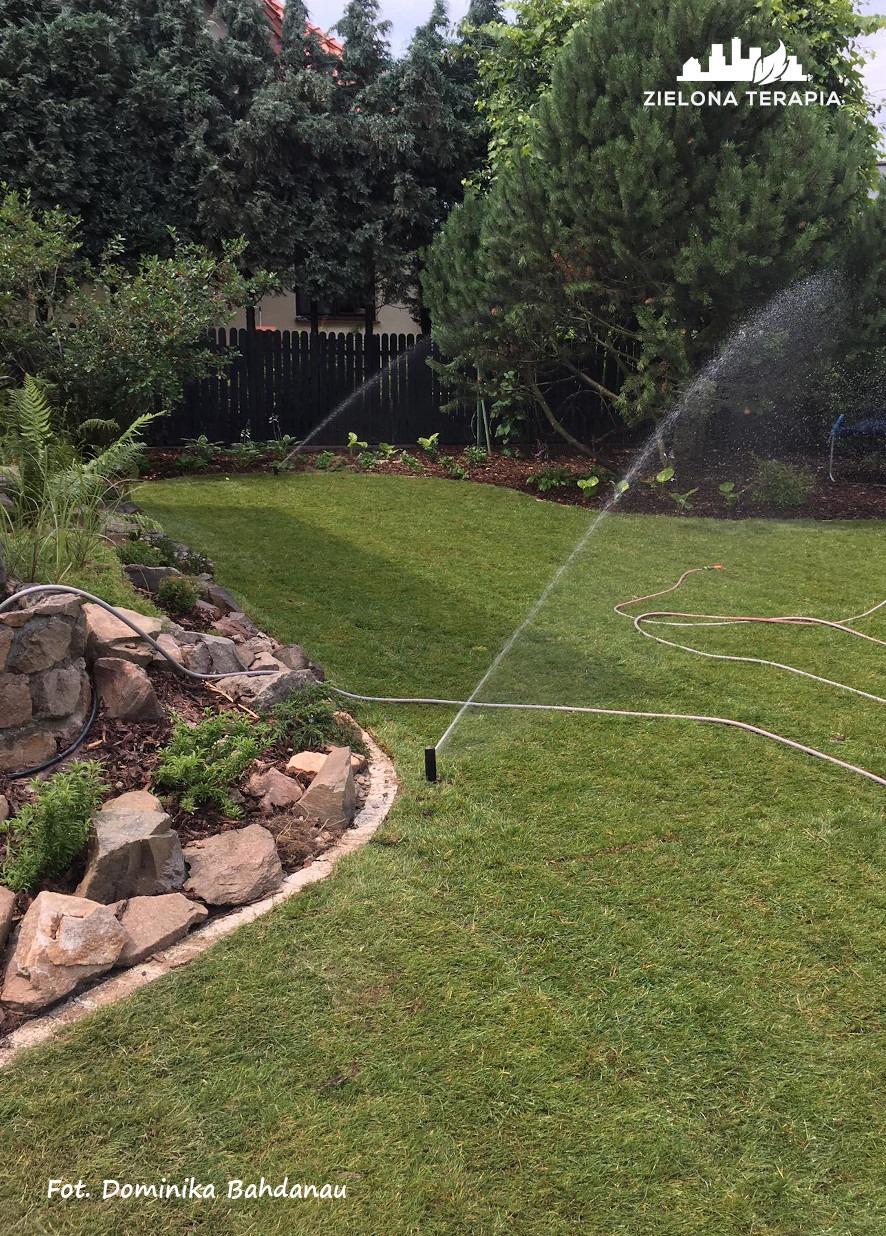 Lusina 16 p - Ogród przydomowy - modernizacja