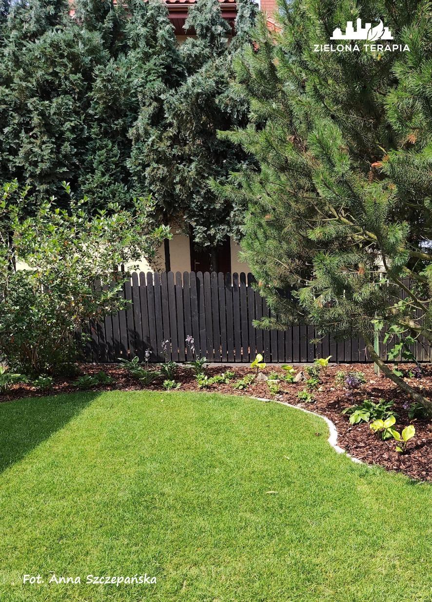 Lusina 5 P - Ogród przydomowy - modernizacja